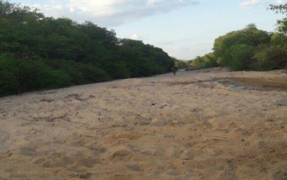 Temendo a morte do Rio Gurguéia, ambientalistas criam ONG para salvá-lo.